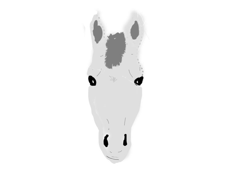 kat's drawing of serena