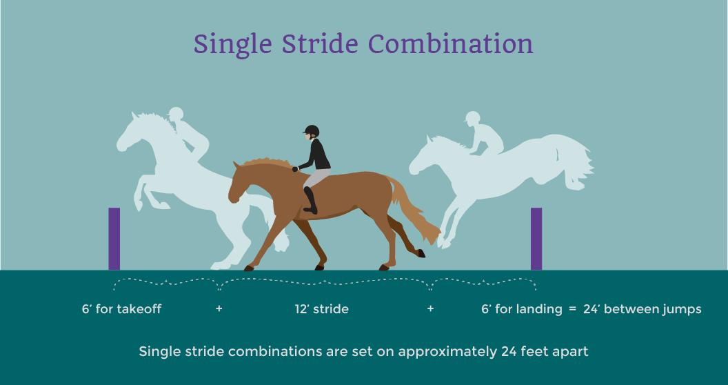 horse single stride jump combination illustrated