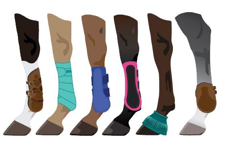 Horse Legs boots wraps