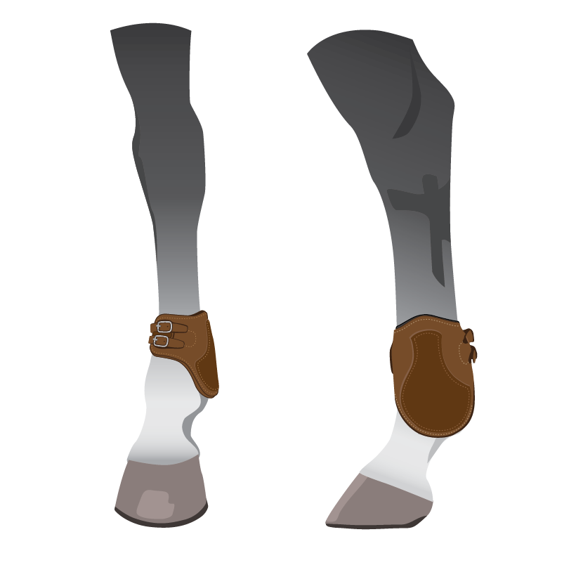 horse hind leg ankle boots illustration