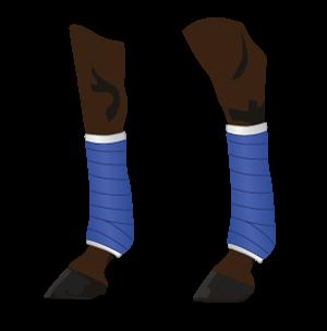 Horse Standing Wraps legs illustration